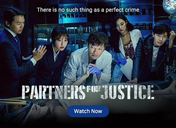 partners-for-justice