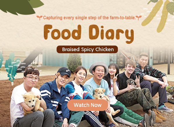 food-diary-braised-spicy-chicken