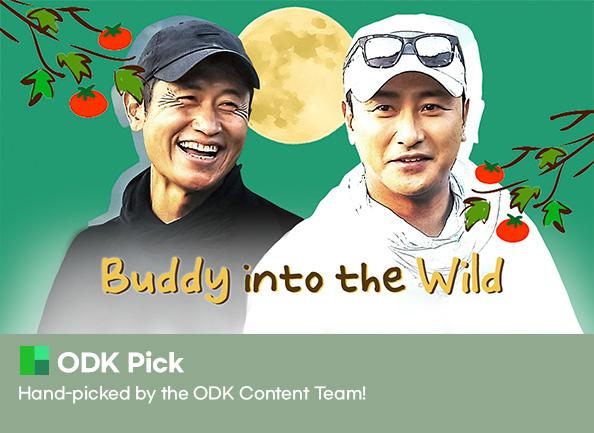 buddy-into-the-wild